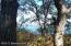 Tbd Preserve Drive, Richville, MN 56576