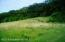 1,200'+- LAKESHORE! 1/2 WOODED 1/2 MEADOW