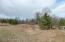 Tbd Co Hwy 15, Sebeka, MN 56477
