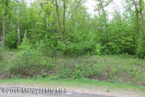 Tbd Big Pine Bk Lot, Perham, MN 56573