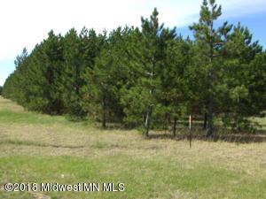Lot 2 County Road 21, Menahga, MN 56464