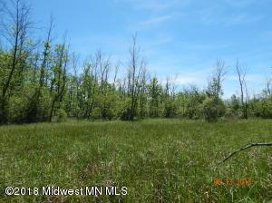 Tbd State Hwy 29, Deer Creek, MN 56527