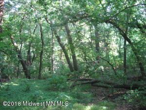 0000 Oak Ridge Beach Road, Richville, MN 56576