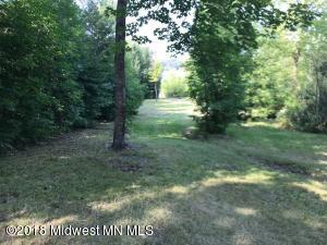 Xxx Curly Drive, Deer Creek, MN 56527