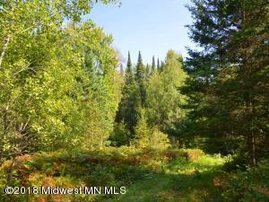 Xxx Mn-113, Park Rapids, MN 56470