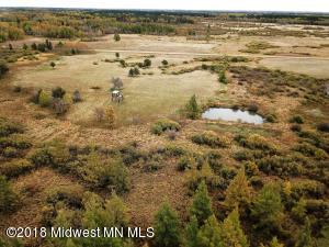Tbd 199th Avenue Avenue, Menahga, MN 56464