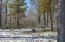 13505 Black Bear Drive, Park Rapids, MN 56470