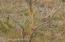 Tbd Tbd Ne 1/4, Lancaster, MN 56735