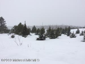Tract D Co Hwy 25, Detroit Lakes, MN 56501