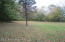 Private Treed Lot