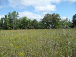 Lot 2 Highway 78 South -, Ashby, MN 56309