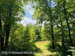Tbd Nighthawk Trail, Browerville, MN 56438