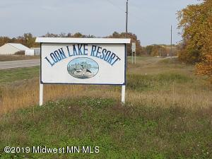 32053 Loon Drive, Vergas, MN 56587