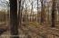Wooded lot, Glawe Lake frontage