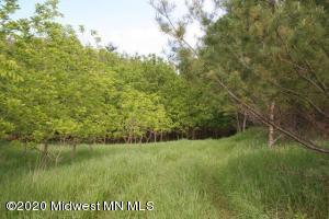 Tbd E Lake Seven Road, Frazee, MN 56544
