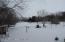 Winter - yard