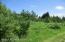 Trails cleared thru 55 acres