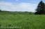 Open Meadows for Wildlife grazing
