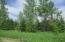 55 Acres of Great Hunting for Ducks / Deer