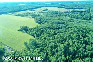 Tbd 580th Avenue, Menahga, MN 56464