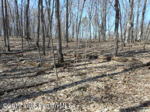Lot 1 & 2 Campfire Road, Vergas, MN 56587