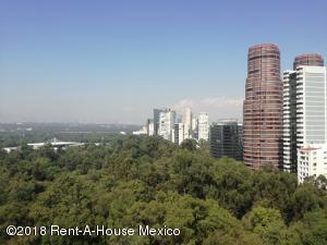 Departamento En Rentaen Miguel Hidalgo, Polanco, Mexico, MX RAH: 19-79
