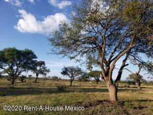 Terreno En Rentaen Queretaro, San Isidro Juriquilla, Mexico, MX RAH: 20-2927
