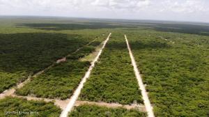 Terreno En Ventaen Chicxulub Pueblo, Chicxulub, Mexico, MX RAH: 21-4253