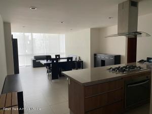 Departamento En Rentaen Miguel Hidalgo, Ampliacion Granada, Mexico, MX RAH: 21-4509