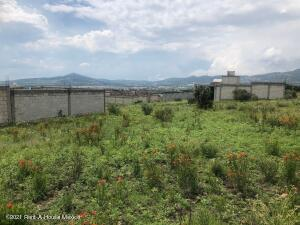 Terreno En Ventaen San Agustin Tlaxiaca, La Loma, Mexico, MX RAH: 21-4887