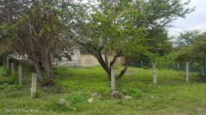 Terreno En Ventaen Yautepec, Apanquetzalco, Mexico, MX RAH: 22-1099