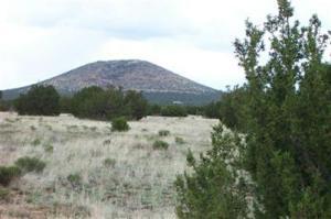 879 E Kron, Williams, AZ 86046