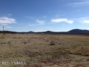 3304 E Mountain Man Trail, Williams, AZ 86046