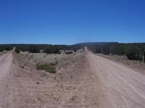 56682 N La Carro Lane, Seligman, AZ 86337