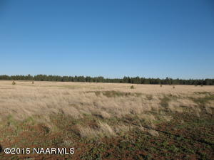 20408 S Garland Prairie, Parks, AZ 86018