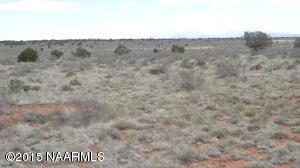 4601 Sublime Drive, Valle, AZ 86046