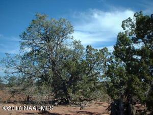 3961 Lasso Loop, Valle, AZ 86046
