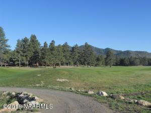2962 W Burning Tree Drive, Williams, AZ 86046