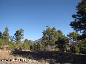 4451 E Green Mountain Drive, Flagstaff, AZ 86004