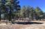 0 Route 66, Flagstaff, AZ 86001