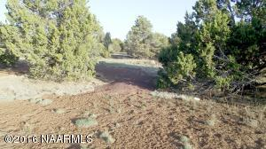 427 E Orchid, Williams, AZ 86046
