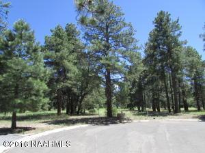 2834 W Castle Pines, Williams, AZ 86046