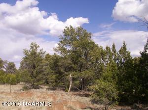 0 Cosnino Road, Flagstaff, AZ 86004