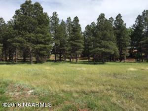 502 Lots A Luck Lane, Mormon Lake, AZ 86038