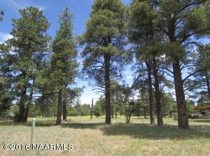 2876 W Burning Tree Drive, Williams, AZ 86046