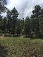 238 E Foothill Trail, Williams, AZ 86046