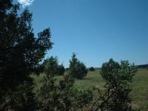1571 W Wolf (Lot 6) Lane, Williams, AZ 86046