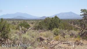 4768 South Rim Ranch Rd, Williams, AZ 86046