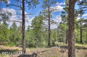1676 Canyon View Loop, Williams, AZ 86046