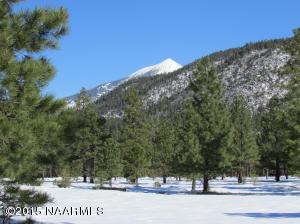 Par 8t Lockett Ranches, Flagstaff, AZ 86001